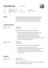 Hair Stylist Resume Sample Resumelift Com Resume Template Examples