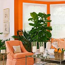 Living Room Colors That Go With Burnt Orange Clothing Burnt