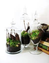 Apothecary Jars Decorating Ideas 100 Ideas To Decorate With Apothecary Jars Decoholic 54