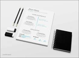Resume Templates For 14 Year Olds Elegant Free Resume Templates 17