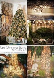 Cool Backyard Design Ideas On A Budget  HowStuffWorksChristmas Lights In Backyard