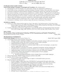 Executive Summary Resume Examples Best Sample Career Summary For Resume Wakeboardingsupplies