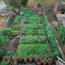 backyard vegetable garden design. productive garden on a small urban lot vegetablegardenercom backyard vegetable design