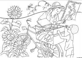 7月の塗り絵高齢者向け無料でもらえる夏イラスト54選 暮らしの情報局