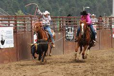 team roping horse horse horse riding bull riding team roper horse clothing