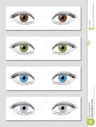 Eye Color Chart Eye Color Chart Brown Green Blue Gray Stock Vector
