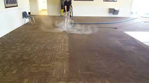 dolphin carpet cleaning restoration