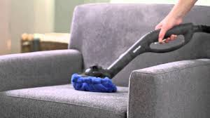 How to Clean Furniture and Kill Bed Bugs with a Steam Cleaner