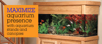 furniture aquarium. aquarium stands and canopies furniture o