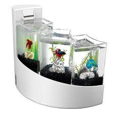 office desk fish tank. Aqueon Betta Falls Aquarium Kit In White Office Desk Fish Tank
