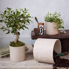 Cheap Modern Planters: A Simple DIY