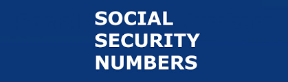 social security numbers ssns how