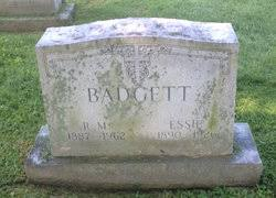 Mary Essie Smith Badgett (1896-1926) - Find A Grave Memorial