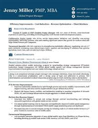 Sample Of Executive Resumes Template Ideas Resume Examples For Older Workersive