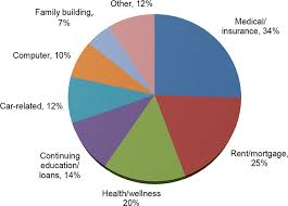 Denmark Government Spending Pie Chart This Pie Chart Reflects The Categories Of Funding For