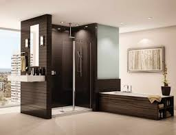 Walk In Shower Without Door Or Curtain Gopelling Net