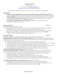It Program Manager Resume Sample Best Program Manager Resumes It