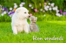 Image result for bon vendredi