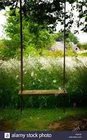 empty swing seat hang hanging tree garden park parkland flower flowers flowering summer