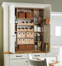 Pantry For A Small Kitchen Kitchen Pantry Ikea Pantry 15 Handy Kitchen Pantry Designs With