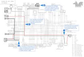 wiring diagram for wolf generator wiring image building the auxiliary wiring harnesses on wiring diagram for wolf generator