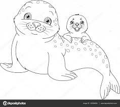 Seal Familie Kleurplaat Stockvector Malyaka 130596254