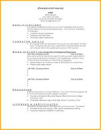 How To Put Skills On Resume Computer Software Skills To Put On Resume Amazing List Of Gallery