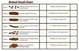 Details About Vinyl Sticker 20x13cm Laptop Wall Medical Bristol Stool Chart Humour Poop Poo