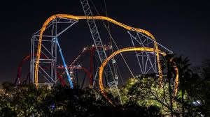 tigris at night busch gardens tampa