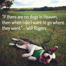 Loss Of A Pet Quote 100 Dog Loss Quotes Comforting Words When Losing a Friend 54