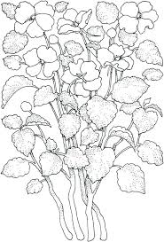 Spring Flower Template Flower Pattern Coloring Pages Best Coloring Pages For Spring Flowers