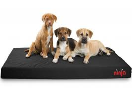 image of black ninja bed with three puppies on it