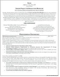 Professional Resume Services Elegant Resume Services Denver Resume