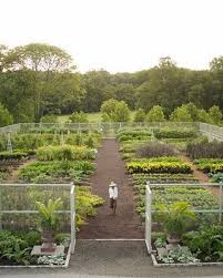 Small Picture 40 best Vegetable Gardening images on Pinterest Veggie gardens