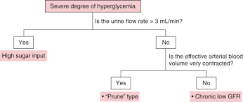 Blood Sugar Levels For Hyperglycemia Chart Hyperglycemia An Overview Sciencedirect Topics