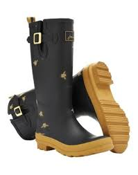 Image result for Joules field welly