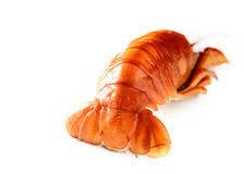 """Résultat de recherche d'images pour """"queue de homard"""""""