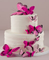 Butterfly Wedding Cake Toppers Cake Decorations