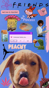 ✰P I N T E R E S T : @elliexxTT✰ - Tumblr Phone cases ☔️ - #Cases  #elliexxTT #phone #Tumblr | Retro wallpaper, Wallpaper iphone cute, Cartoon  wallpaper