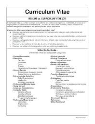 Word 2003 Resume Template Resume Templates For Word Resume Templates