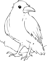 Small Picture Raven coloring page Animals Town animals color sheet Raven
