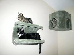 Corner Cat Shelves New Corner Cat Shelf Climbing Cat Wall Shelves Plus Corner Condo Cat