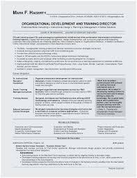Resume For Maintenance Custom Maintenance Planner Resume Sample Perfect Business Management Resume