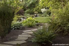 hillsboro or shade plants