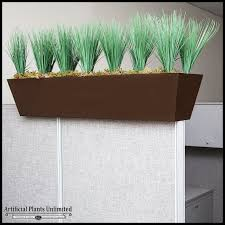 plants for office cubicle. Click To Enlarge Plants For Office Cubicle