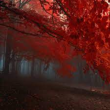 Autumn (Dual Monitor) Wallpaper Engine ...