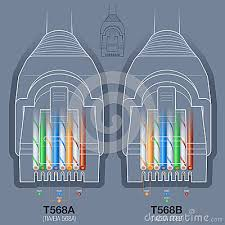 network cable connector wiring diagram stock vector image  t568a t568b termination diagram for rj45 cat cat6 network connector