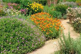 afraid of gardening because it takes up too much water and time there is a gardening system out there for you one that s low maintenance and water saving