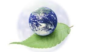 Защита окружающей среды В наше время защита окружающей среды выдвигается на первый план Последствия недостаточного внимания к проблеме могут быть катастрофическими