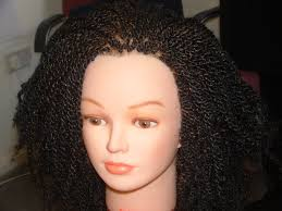 Afro Braid Hair Style professional hair braiding training hairbraidingacademy 8394 by wearticles.com